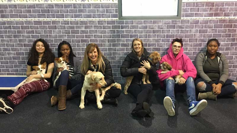 Students visit in Passaic County NJ Animal Hospital